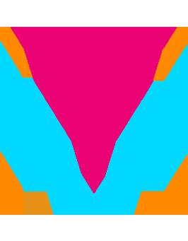 ywm-mark-2a